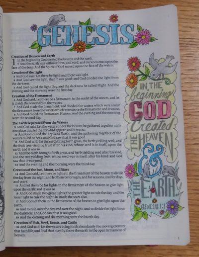 God's Beautiful Creation